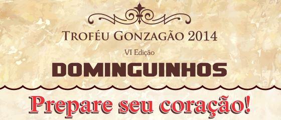 TrofeuGonzagão 2014 Site5x2